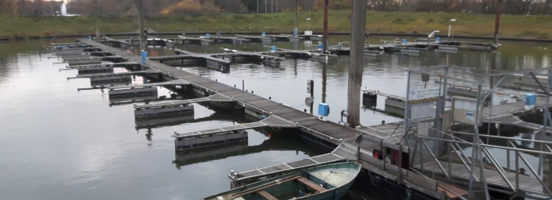 Saisonende in Etappen – von schaukelnden Booten und zähen Ruderern