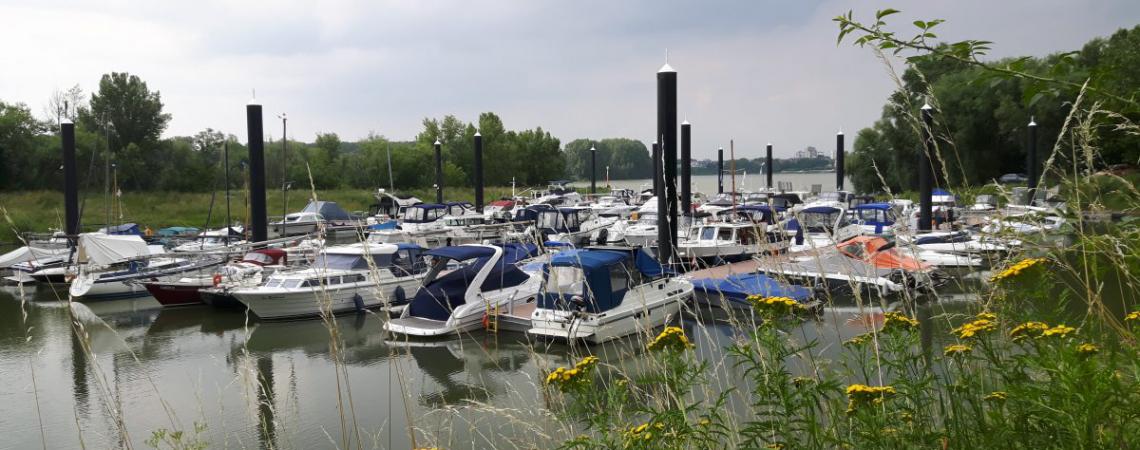 Neuer Hafen, neue Boote