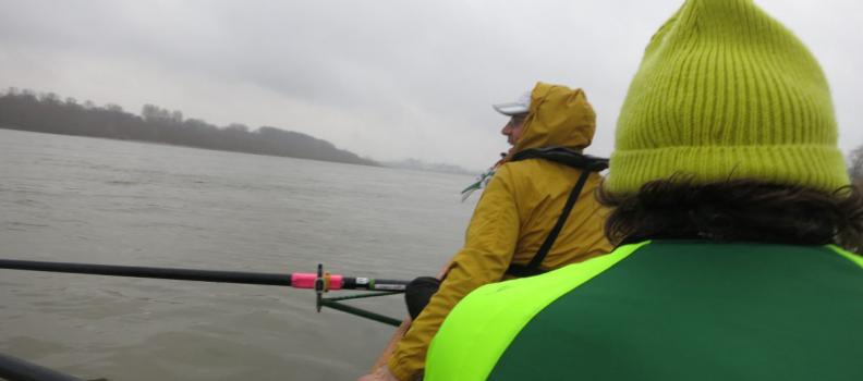 Neuer Kilometerrekord der Ruderer, wenig Wasser für Motor- und Segelboote – So war 2018