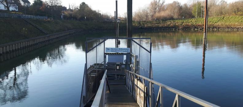 CfWP Hafenarbeiten: Das erste Schiff im Hafen…