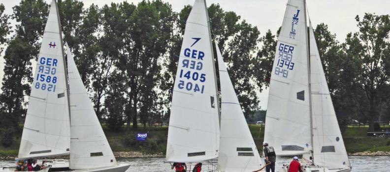 """Segelregatta """"Rheinwoche"""" mit Hindernissen"""